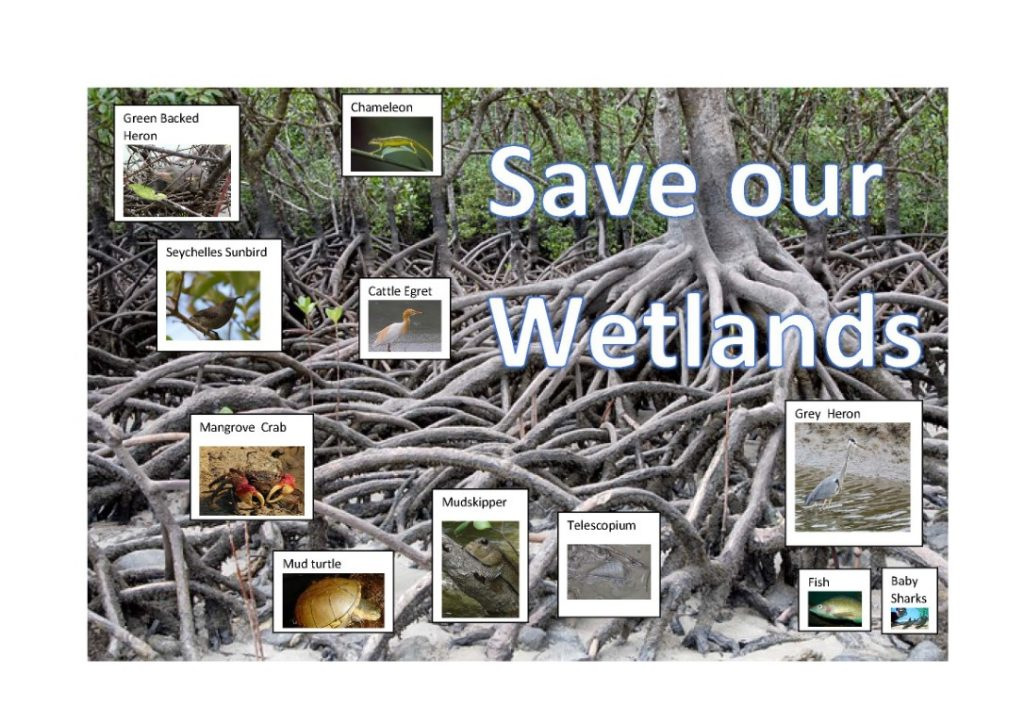 World Wetland Day February 2nd 2021