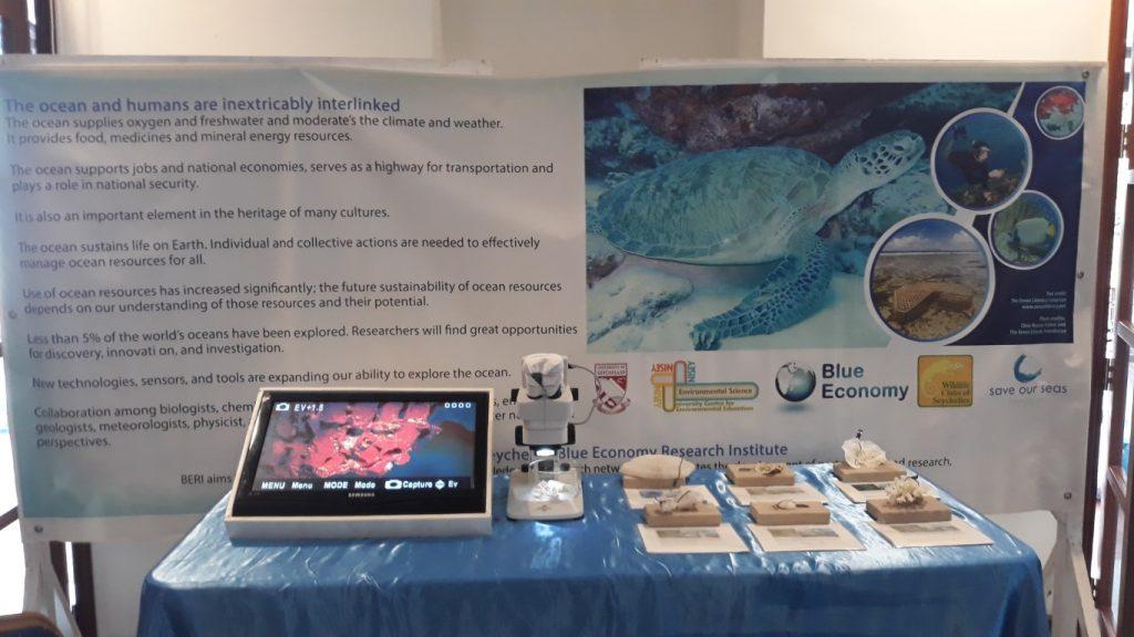 SeyCCats Blue Grant fund for ISS Mangrove Regeneration Boardwalk Project