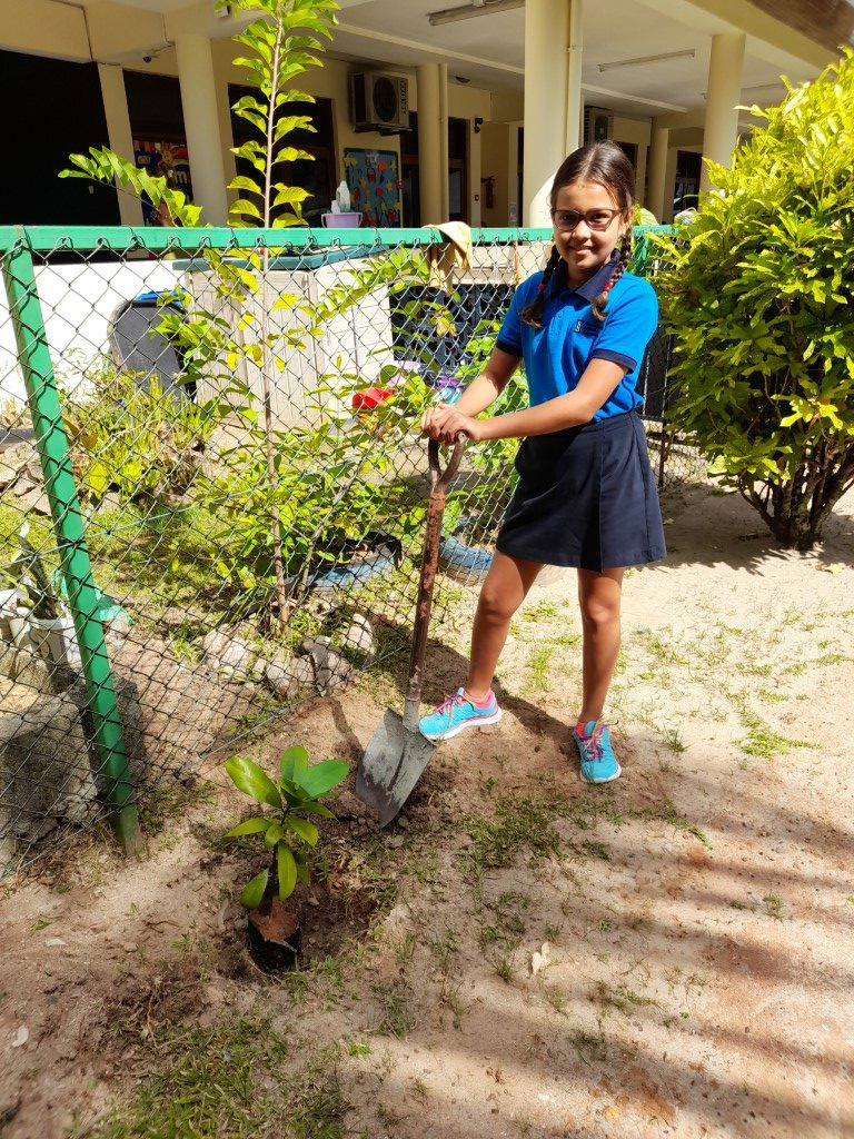 Eco Warriors plant trees around Mahe